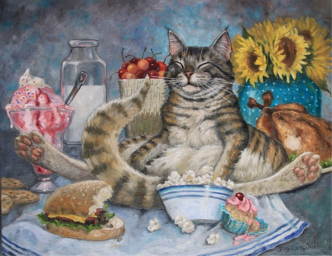 рождении жизнь одной кошки в картинках употребления